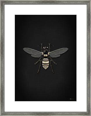 Black Wasp With Gold Accents On Black  Framed Print by Serge Averbukh