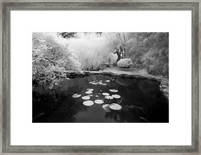 Black Water Pond Framed Print by John Gusky