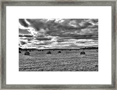 Framed Print featuring the photograph Black-white Hay Day by Gary Smith