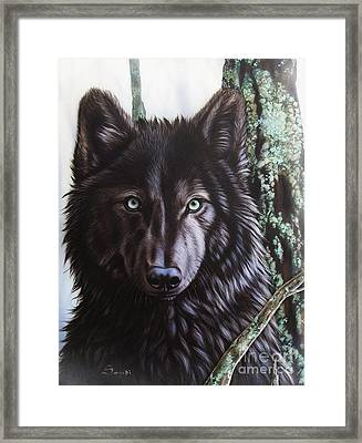 Black Wolf Framed Print by Sandi Baker