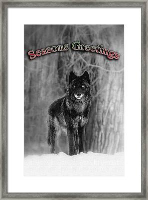 Black Wolf Seasons Greetings Framed Print