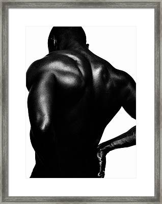 Blackback Framed Print by Sergio Bondioni