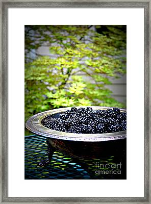 Blackberries In Silver Dish Framed Print