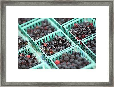 Blackberry Baskets Framed Print by Todd Klassy