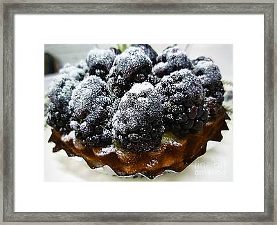 Blackberry Tart Framed Print by Renee Trenholm