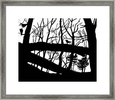 Blackbird In The Woods Framed Print by Martin Stankewitz