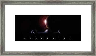 Blackbird Framed Print by Peter Chilelli