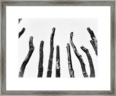 Blackened And Scorched  Framed Print