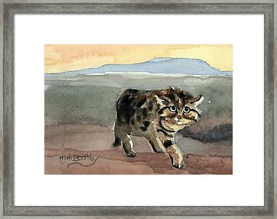 Blackfooted Cat Framed Print