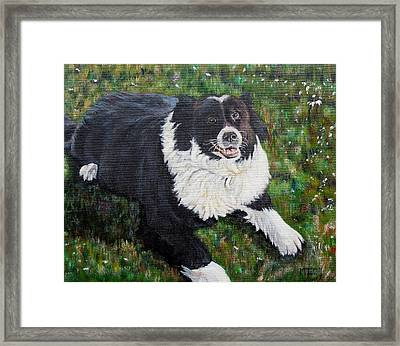 Framed Print featuring the painting Blackie by Marilyn  McNish