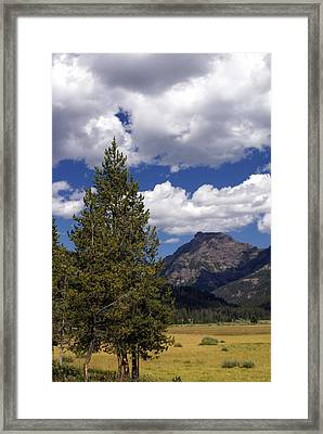 Blacktail Plateau Vertical Framed Print by Marty Koch
