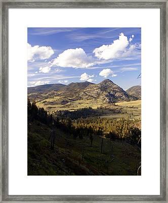 Blacktail Road Landscape Framed Print by Marty Koch