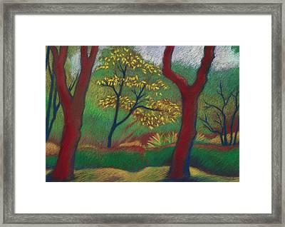 Blake Gardens California Framed Print