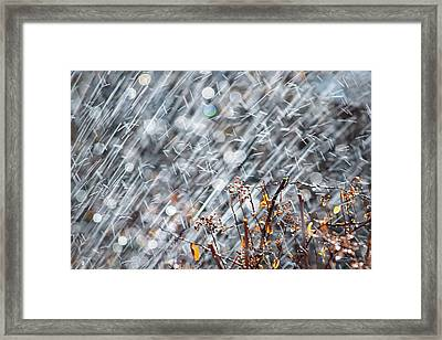 Blame It On The Rain Framed Print