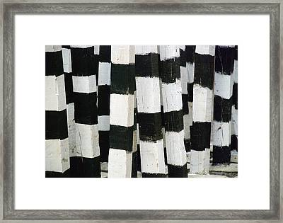 Framed Print featuring the photograph Blanco Y Negro by Skip Hunt