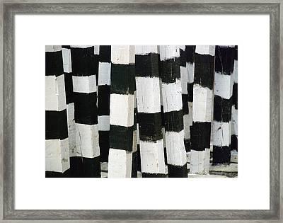 Blanco Y Negro Framed Print