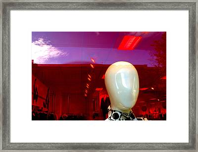 Blank Rosa 2 Framed Print by Jez C Self