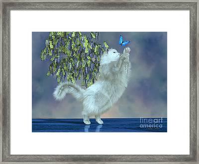 Blanka The Garden Cat Framed Print by Corey Ford
