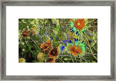 Blanket Flower II Framed Print