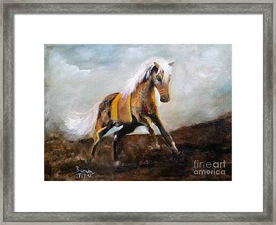 Blanket The War Pony Framed Print