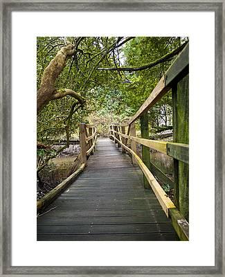 Blarney Boardwalk Framed Print by Rae Tucker