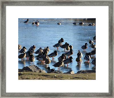Blasted Ice Framed Print