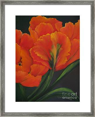 Blaze Of Glory Framed Print by Carol Sweetwood