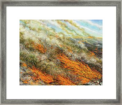 Blaze Framed Print by Tilly Willis