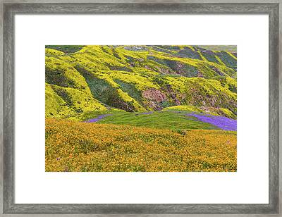 Framed Print featuring the photograph Blazing Star On Temblor Range by Marc Crumpler
