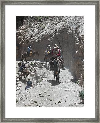 Framed Print featuring the photograph Blazing The Trail by Nancy Taylor