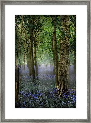 Blebells Framed Print