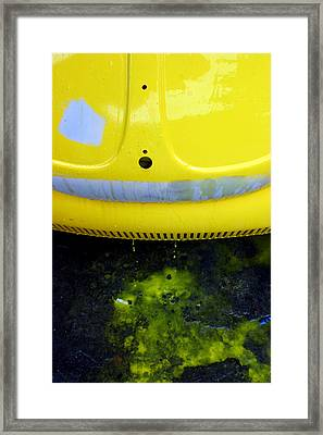 Bleeding Beetle Framed Print by Jez C Self