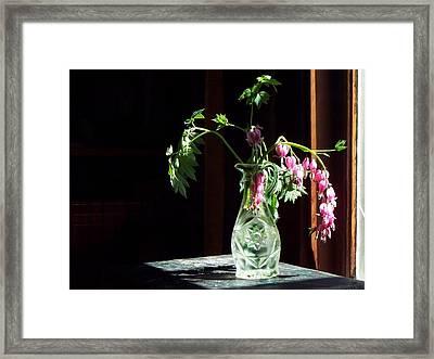 Bleeding Heart Bouquet Framed Print by Joy Nichols