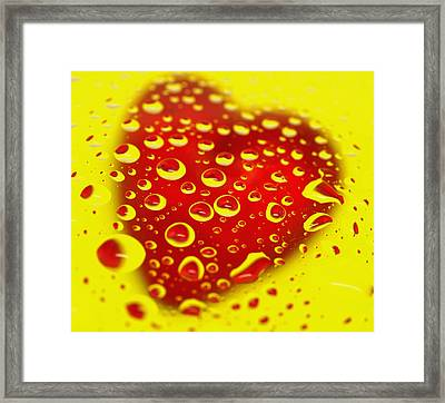 Bleeding Heart Reflections Framed Print