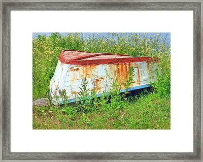 Bleeding Scars Of Age Framed Print