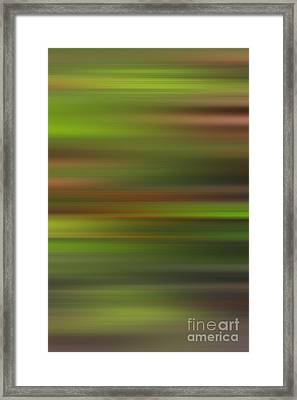 Blended Forest Framed Print