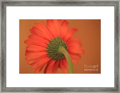 Blending Framed Print
