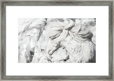 Blending Into The Ice Framed Print by Tim Booth