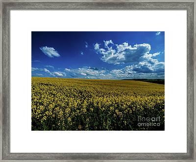 Bliesgau_12 Framed Print