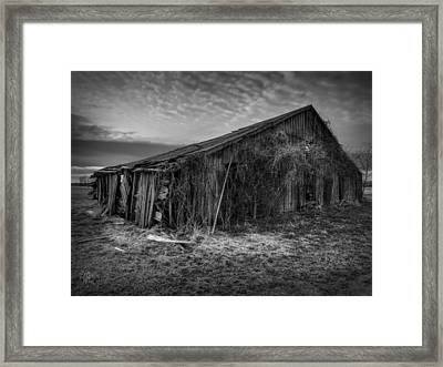 Blighted Barn 002 Bw Framed Print