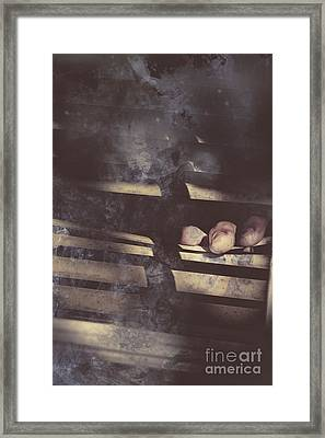 Blind Suspicion Framed Print by Jorgo Photography - Wall Art Gallery