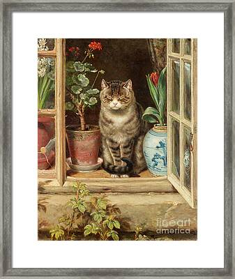 Blinking In The Sun Framed Print by Ralph Hedley