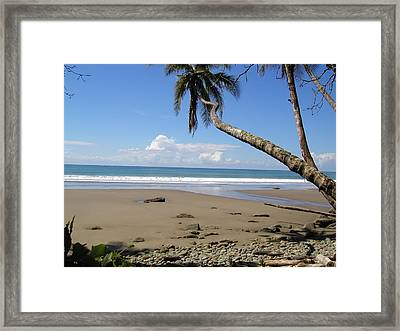 Bliss Framed Print by Gregory Young