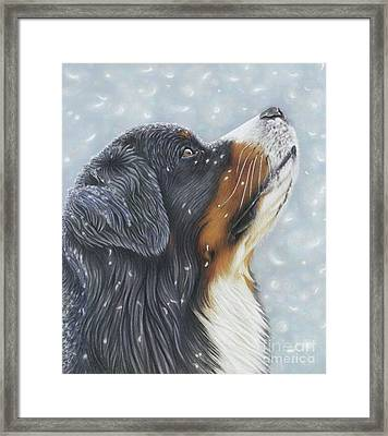 Framed Print featuring the painting Blissful Blue  by Donna Mulley
