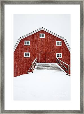 Blizzard At The Old Cow Barn Framed Print