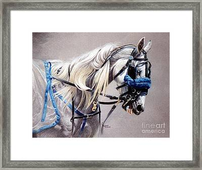 Blizzard Babe Framed Print by Carrie L Lewis