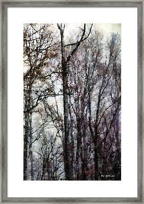 Blizzard Dawning Framed Print by RC deWinter