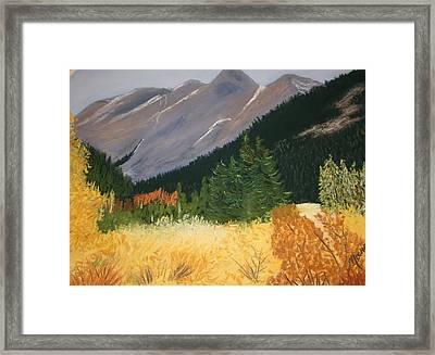 Blm Land Framed Print
