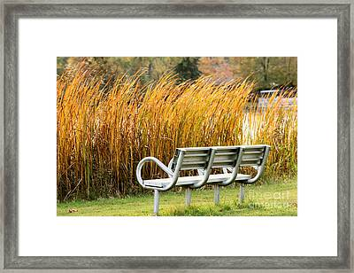 Blocked By The Bush Framed Print