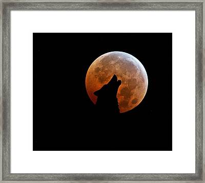 Blood Full Moon And The Wolf Framed Print by Marianna Mills